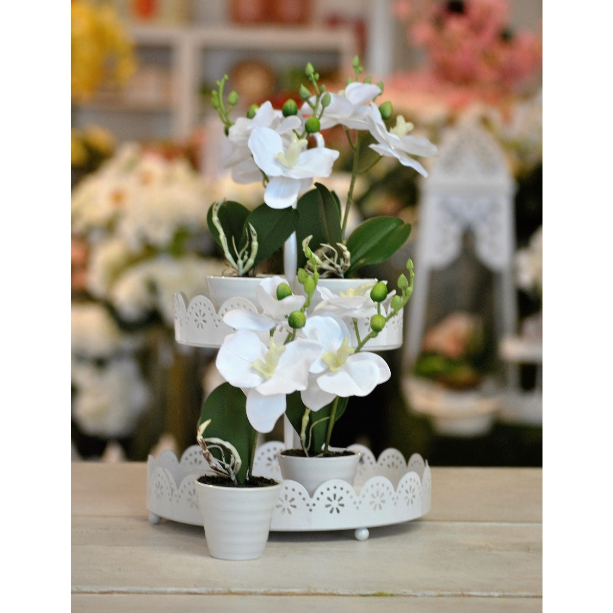 VASETTO CLASSIC ORCHIDEA BUTTERFLY